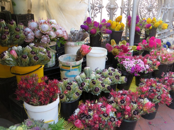 flowermarket cape town south africa