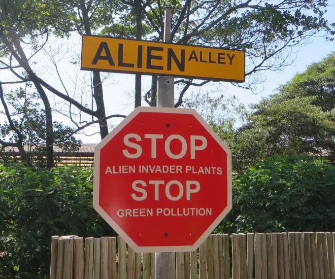 alien alley