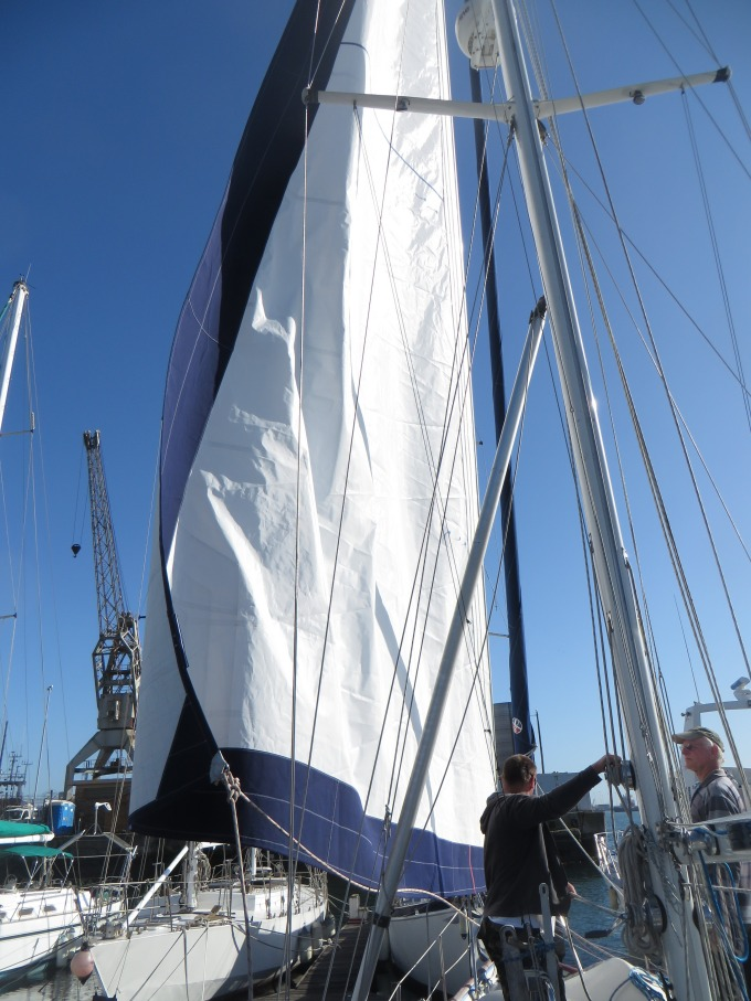 big new sail