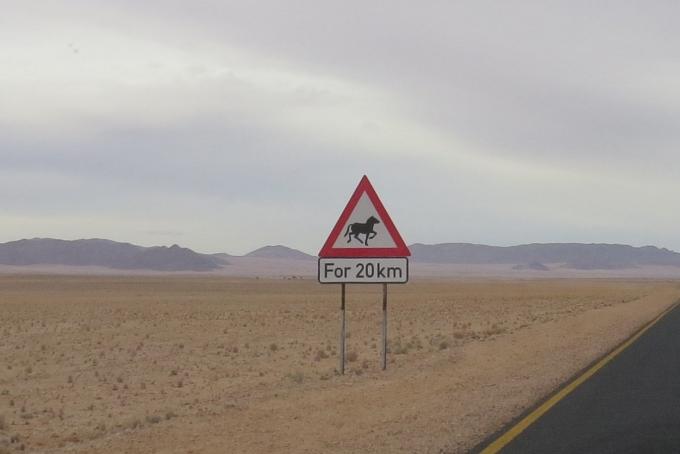 horses next 20 km