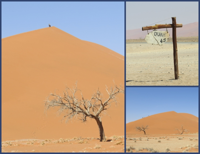 dune 45 in http://www.nineofcups.com/namibiapage.html