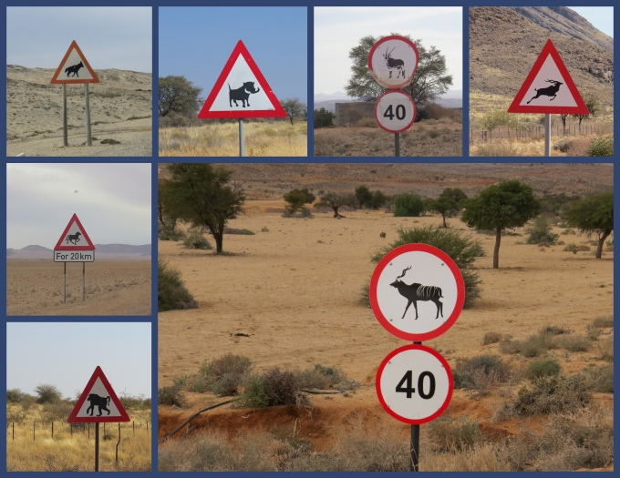 animal crossing signs in namibia