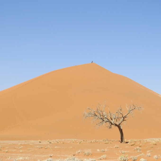 a big dune at sossusvlei namibia