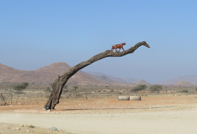 entrance to hammerstein lodge in namibia