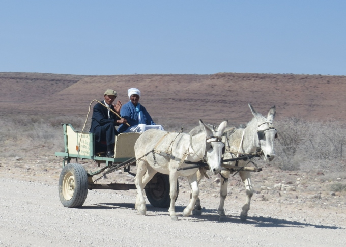 nama donkey cart in namibia