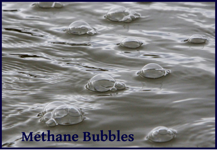 methane bubbles at libertad