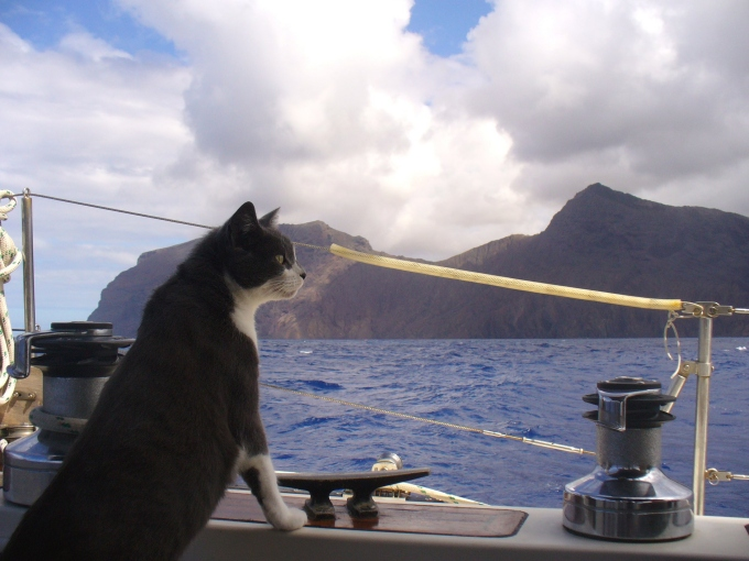 a great old pic of jelly anticipating st helena