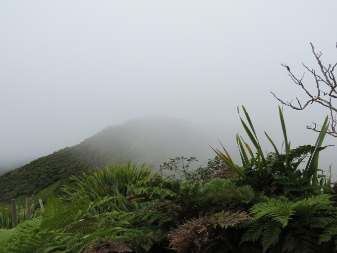 dianas peak view st. helena island