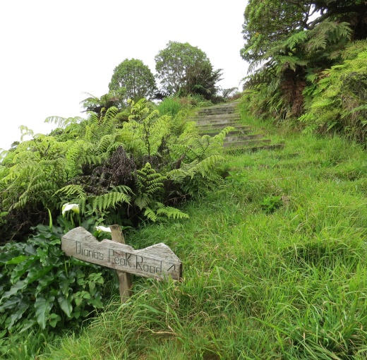 dianas peak trail marker st. helena island