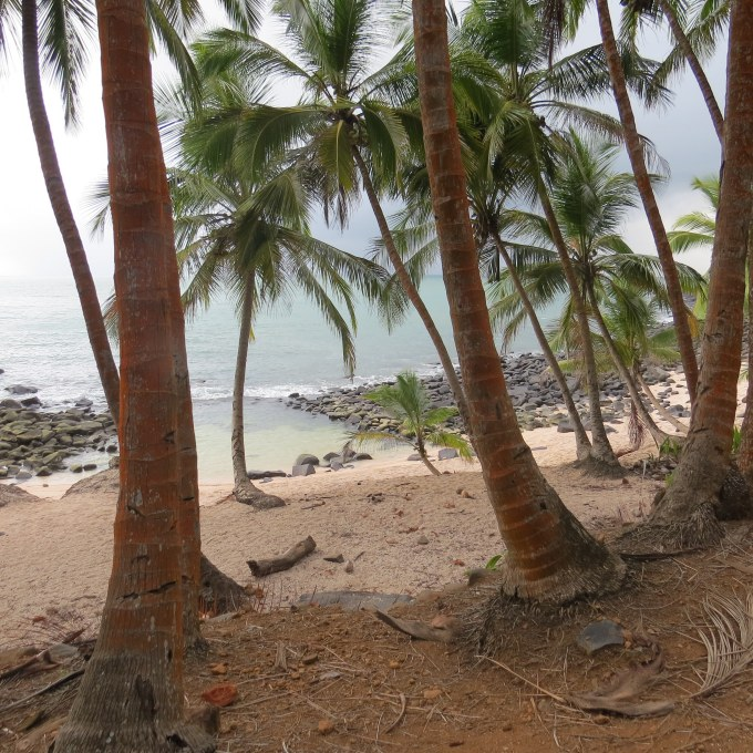 beach on ile st. joseph french guiana