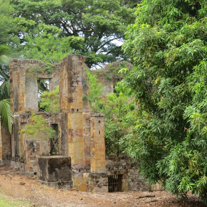 ruins at ile royale french guiana