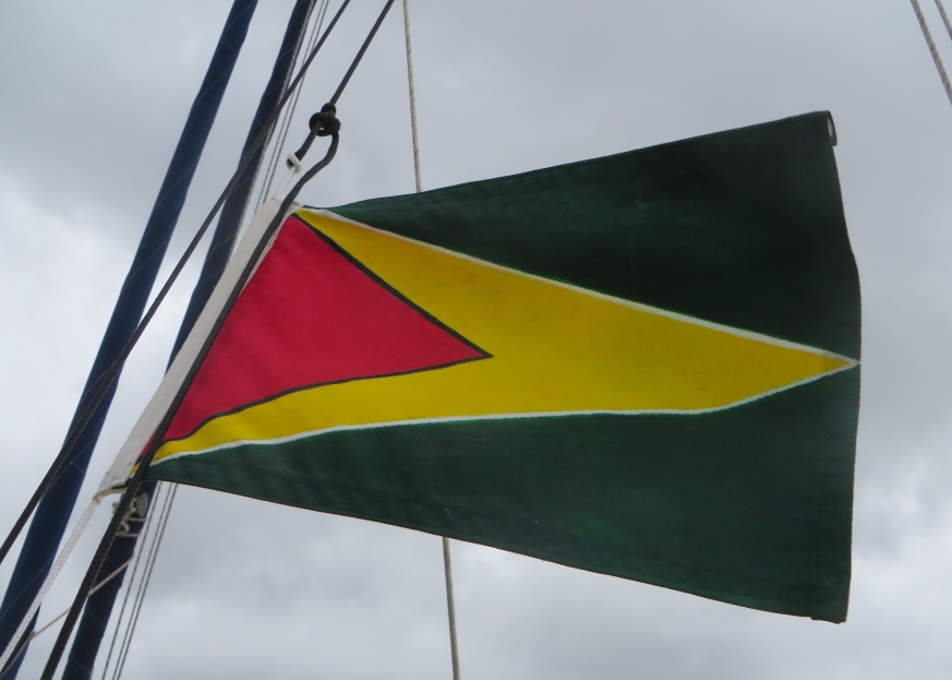 courtesy flag of guyana