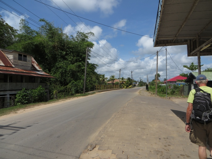 road in domburg suriname