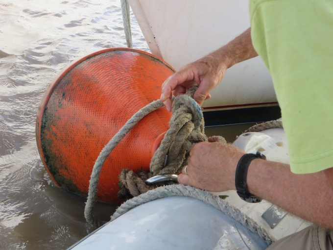 untangling the mooring lines