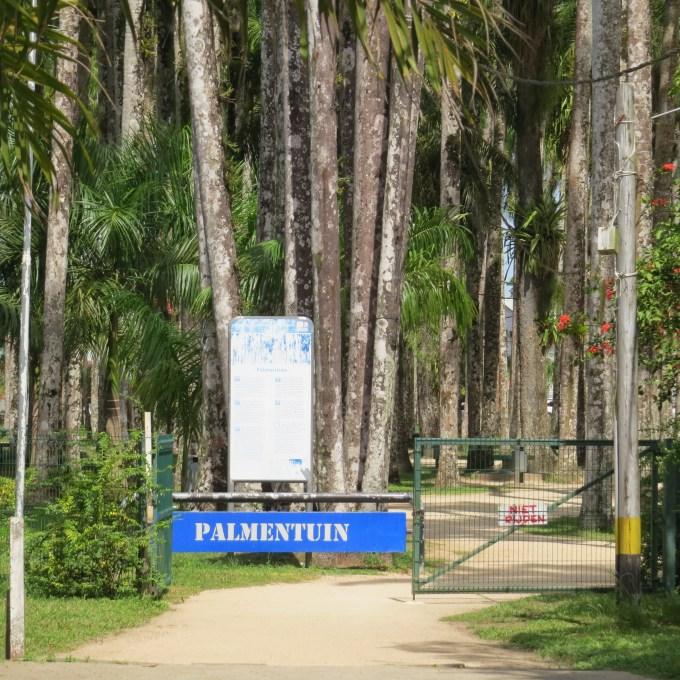 palmentium paramaribo