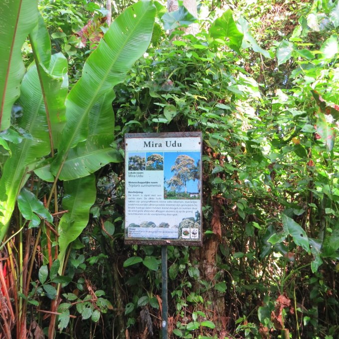signs at peperpot nature park in suriname