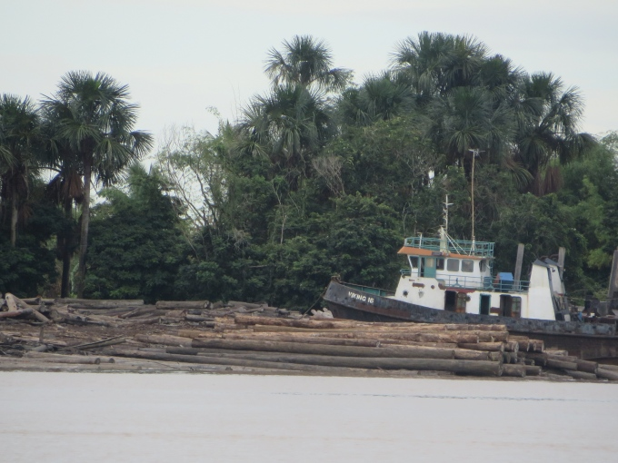 sawmill on the essequibo