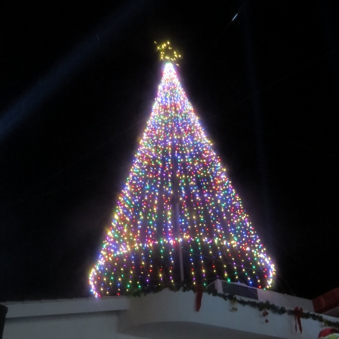 tree lighting in georgetown guyana