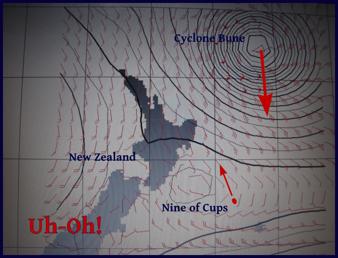 cyclone brune