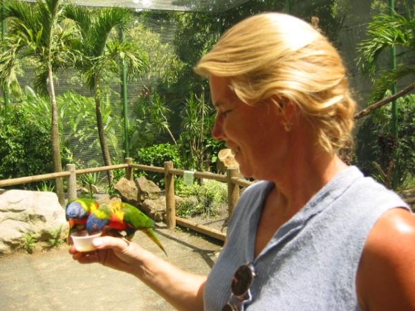 guadeloupe botanical garden