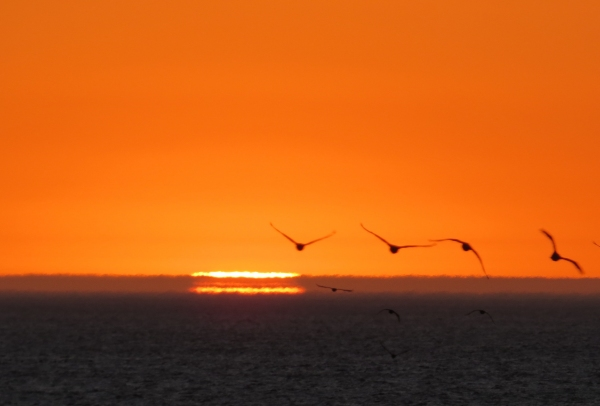whatwemissonland__sunset
