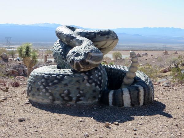 bootleg canyon nevada rattlesnake