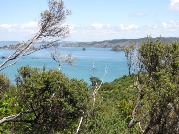 cavalli islands in new zealand