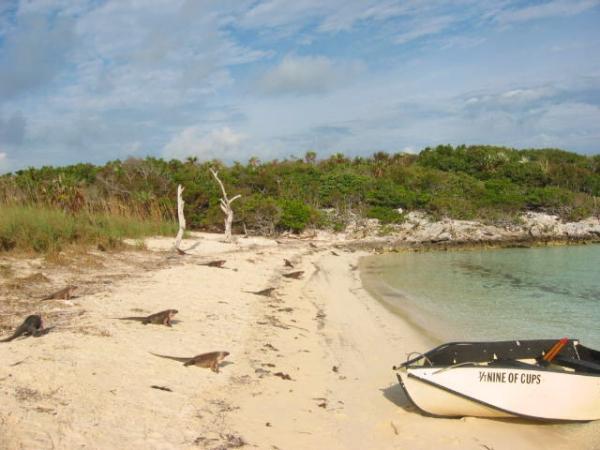 baham exuma islands bahamas