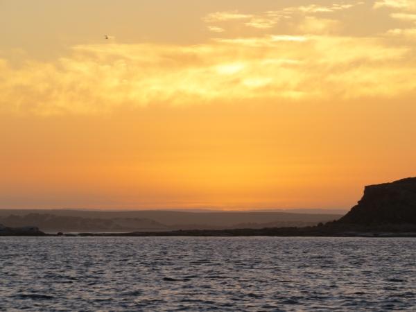 sunrise at waldegrave