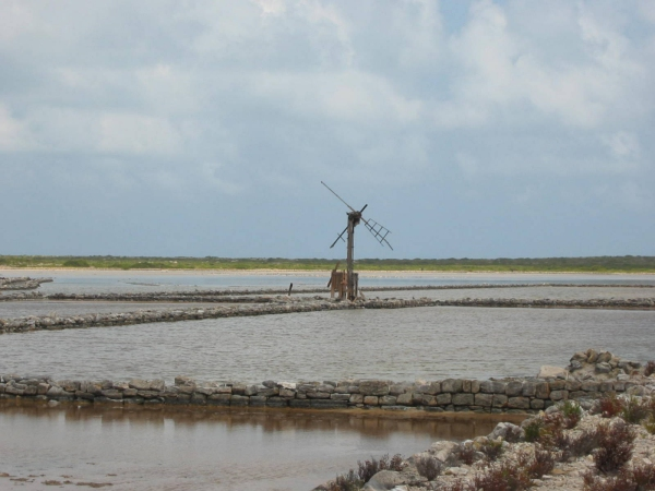 turks and caicos windmill