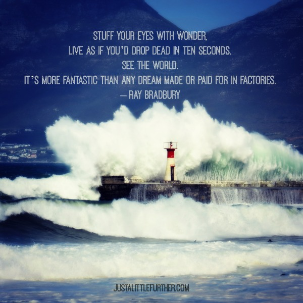 best2015_kalkbay_crashing wave
