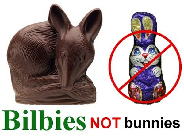 bilbies not bunnies