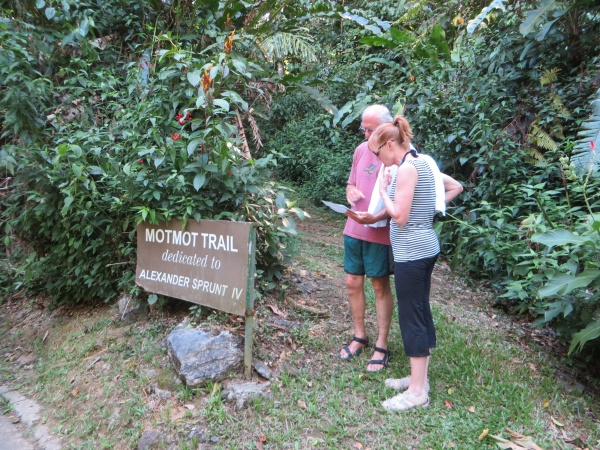 motmot trail at asa wright nature center