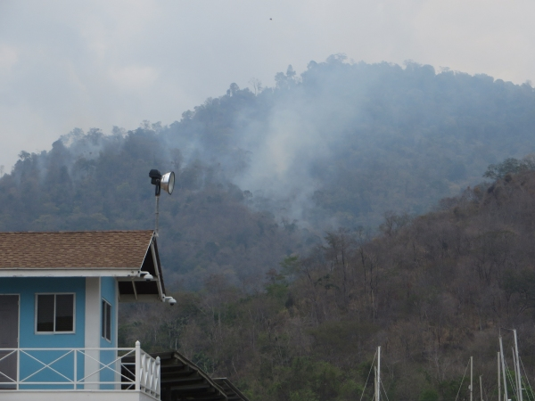 bush fires in the hills of trinidad