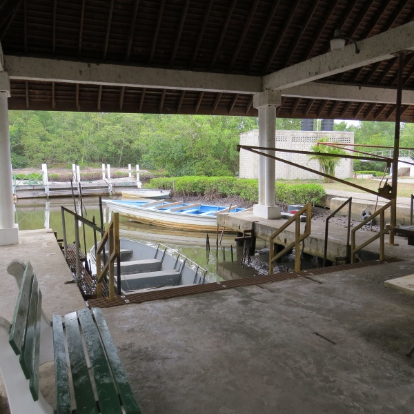 caroni swamp boat dock trinidad