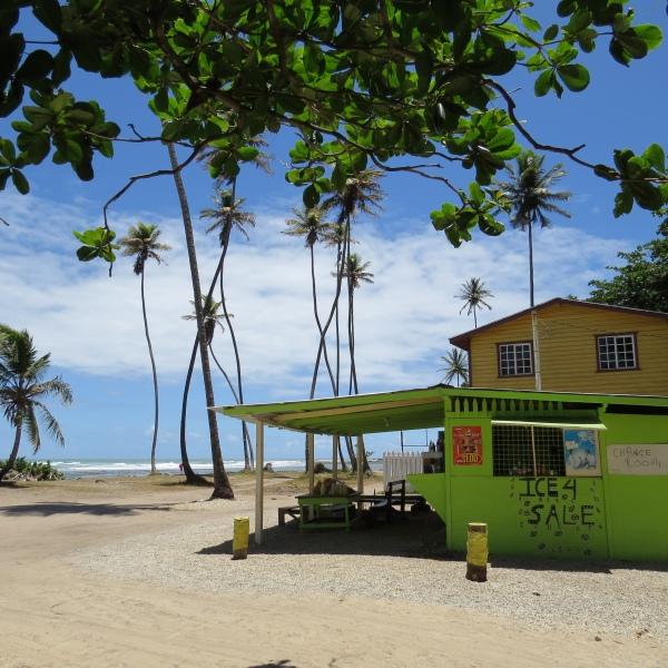 toco beach