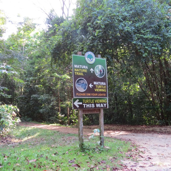 trinidad turtle viewing sign