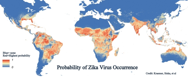probability of zika occurance