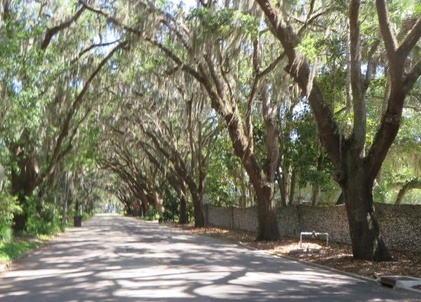 magnolia street, st. augustine, florida