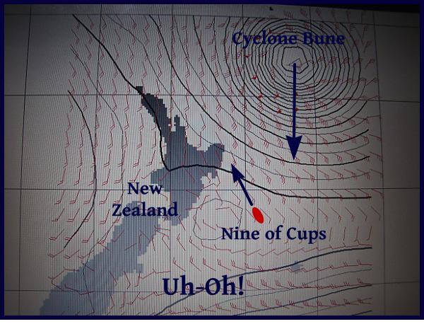 cyclone bune