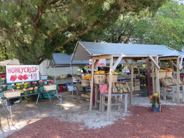 fruit stand in st. augustine, florida