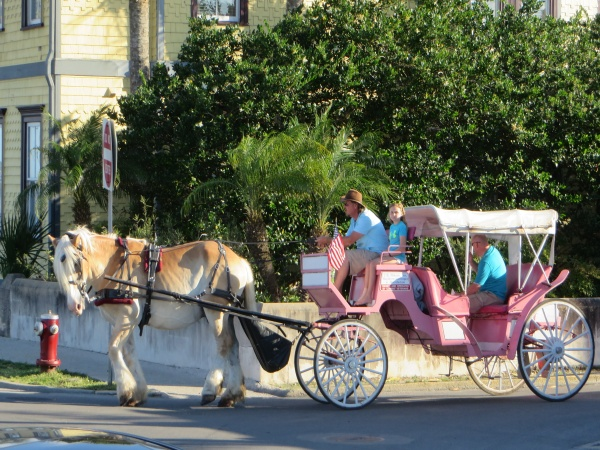 horse drawn carriage st. augustine, florida