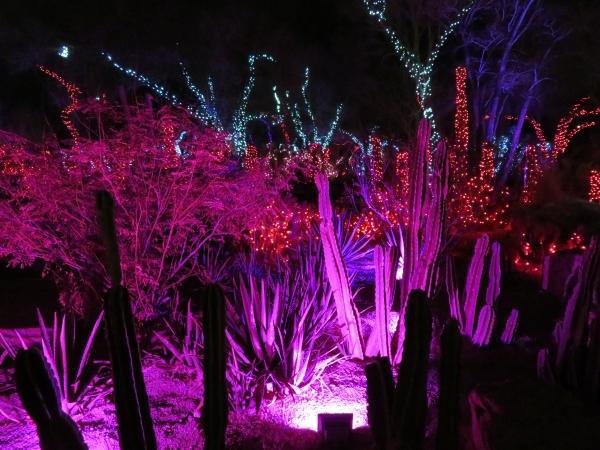ethel m's cactus garden las vegas nevada