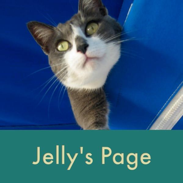 jellys page thumb.jpg
