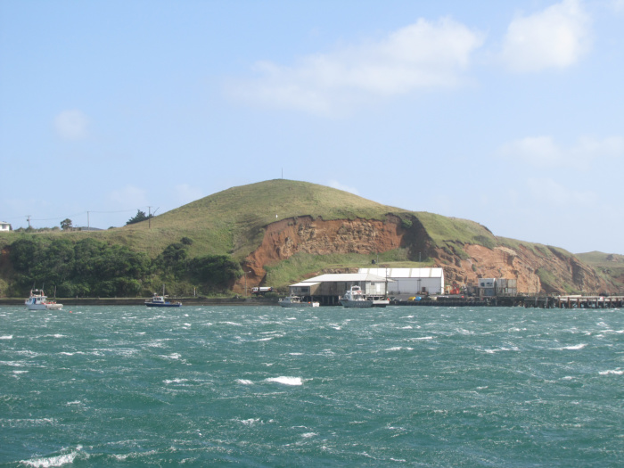 View of waitangi wharf from nine of cups