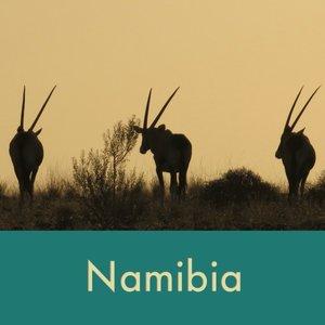 namibia+thumb.jpg