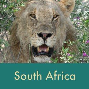 south+africa+thumb.jpg