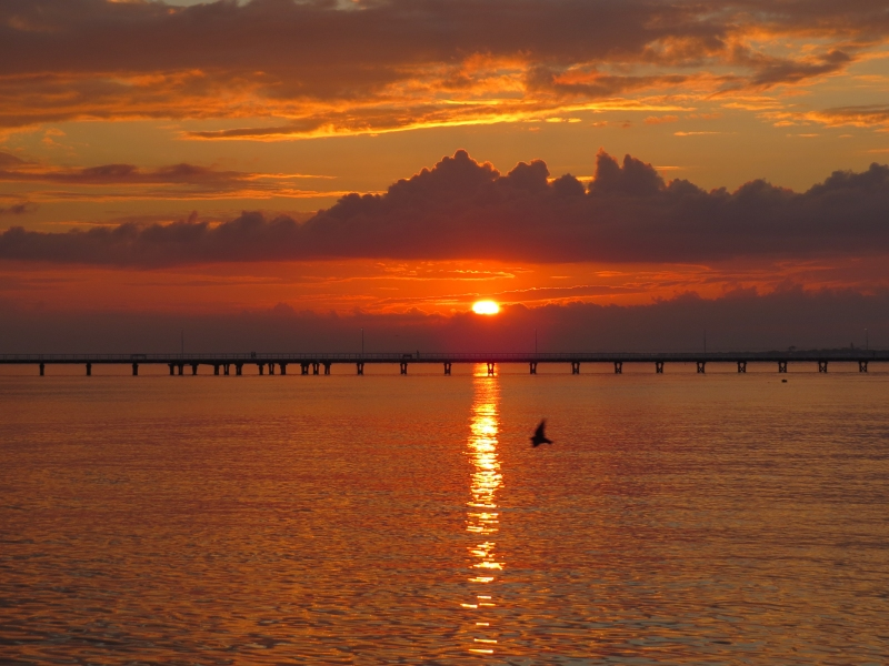 My favorite pic of Busselton ... the Jetty at sunrise.