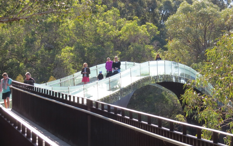 King's Park - Glass Bridge
