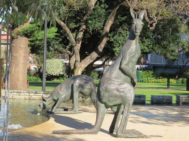 Roos in the park